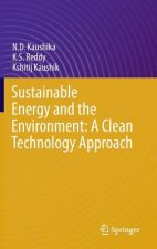 Sustainable Energy and the Environment: A Clean Technology Approach