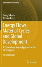 Energy Flows, Material Cycles and Global Development