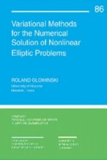 Variational Methods for the Numerical Solution of Nonlinear Elliptic Problems