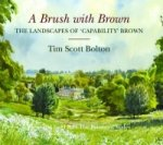 Brush with Brown