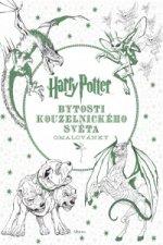 Harry Potter Bytosti kouzelnického světa