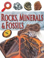 Spotlight Guides Rocks & Fossils