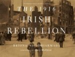 1916 Irish Rebellion