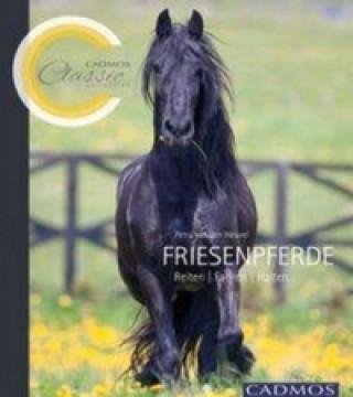 Friesenpferde