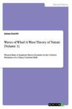 Waves of What? A Wave Theory of Nature [Volume 1]