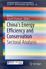 Opportunities and Challenges in China's Energy Development