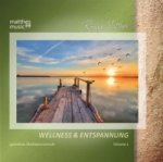 Wellness & Entspannung, 1 Audio-CD. Vol. 1