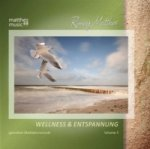 Wellness & Entspannung, 1 Audio-CD. Vol.3