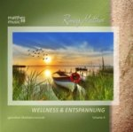 Wellness & Entspannung, 1 Audio-CD. Vol.4