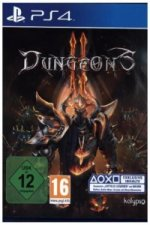 Dungeons 2, 1 PS4-Blu-Ray Disc