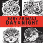 Baby Animals Day and Night
