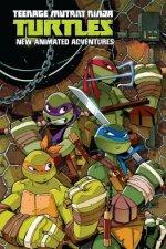 Teenage Mutant Ninja Turtles: New Animated Adventures Omnibu