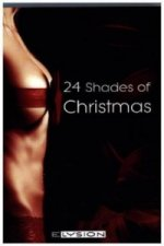 24 Shades of Christmas