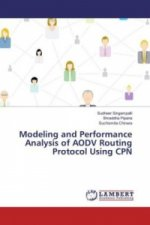 Modeling and Performance Analysis of AODV Routing Protocol Using CPN