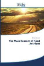 The Main Reasons of Road Accident