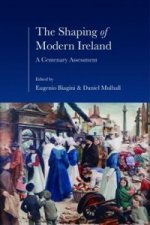 Shaping of Modern Ireland