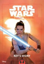 STAR WARS THE FORCE AWAKENS REYS STORY