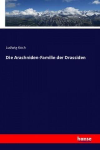 Die Arachniden-Familie der Drassiden