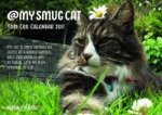 My Smug Cat 2017 Calendar