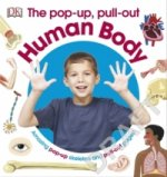 Pop-Up Pull Out Human Body