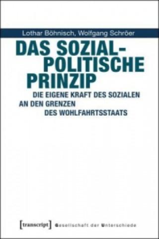 Das sozialpolitische Prinzip