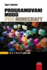 Programování modů pro Minecraft