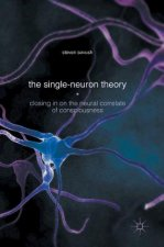 Single-Neuron Theory