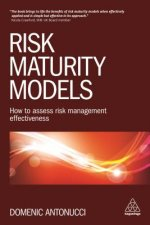 Risk Maturity Models