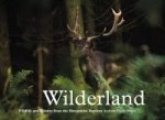 Wilderland, Wildlife and Wonder from the Shropshire Borders