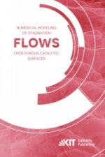 Numerical Modeling of Stagnation Flows over Porous Catalytic Surfaces