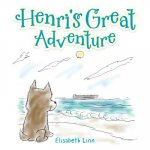 Henri's Great Adventure