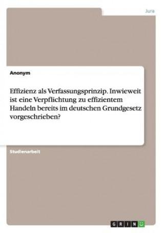 Effizienz als Verfassungsprinzip. Inwieweit ist eine Verpflichtung zu effizientem Handeln bereits im deutschen Grundgesetz vorgeschrieben?