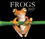 Frogs 2017