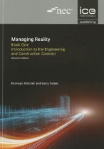 Managing Reality, Book 1: Introduction to the Engineering an