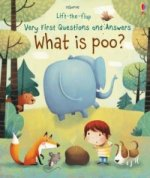 Lift-The-Flap Very First Questions & Answers