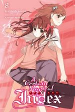 Certain Magical Index, Vol. 8 (light novel)