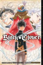 Black Clover, Vol. 2