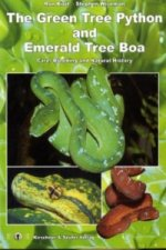 Green Tree Python & Emerald Tree Boa