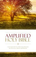 Amplified Holy Bible, Paperback