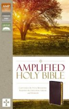Amplified Holy Bible, Bonded Leather, Burgundy, Thumb Indexed