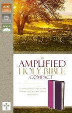 Amplified Holy Bible, Compact, Leathersoft, Pink/Purple