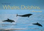 World of Whales, Dolphins & Porpoises