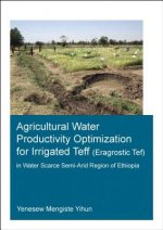 Agricultural Water Productivity Optimization for Irrigated Teff (Eragrostic Tef) in a Water Scarce Semi-Arid Region of Ethiopia
