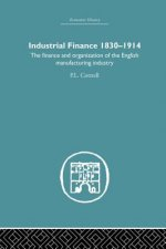 INDUSTRIAL FINANCE 1830 1914 LIBEC