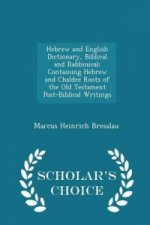 Hebrew and English Dictionary, Biblical and Rabbinical