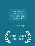 Poetical Works of Alexander Pope, Volume III - Scholar's Choice Edition