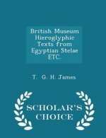 British Museum Hieroglyphic Texts from Egyptian Stelae Etc. - Scholar's Choice Edition