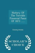 History of the Terrible Financial Panic of 1873 ...... - Scholar's Choice Edition