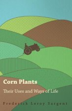 Corn Plants; Their Uses and Ways of Life