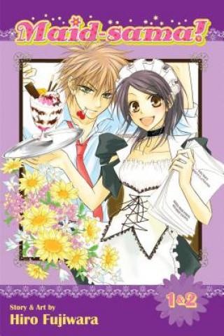 Maid-sama! (2-in-1 Edition), Vol. 1